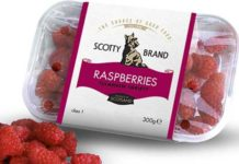 SCOTTISH produce specialist Scotty Brand is welcoming summer with new soft fruits and salad leaves. The strawberries, from Bruce Farm in Ayrshire, will arrive in stores this month, with the raspberries joining them in July.