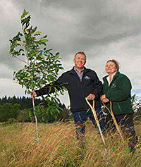 Planting boost for the Ochils
