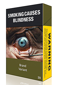 How a standardised cigarette pack might look. The Scottish Government plans to introduce a bill in 12 - 18 months.