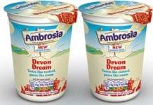 Ambrosia Devon Dream