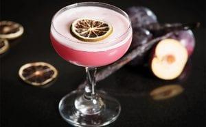 edinburgh-gin-oct-2016_plum_cocktail-2-copy