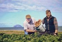 girvan-early-growers