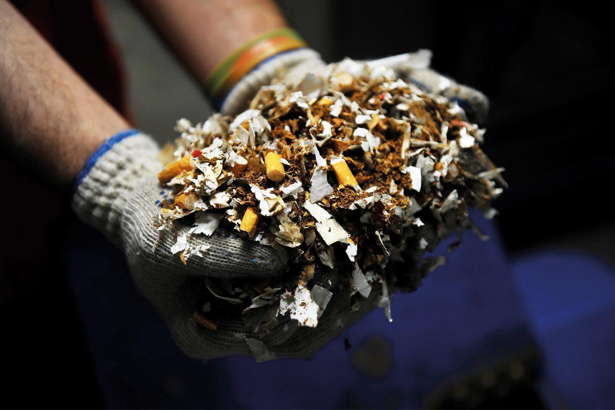 Shredded illegal cigarettes